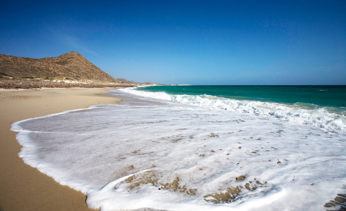 3 Natural Wonders To Enjoy When Visiting Los Cabos