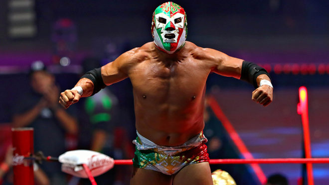 Lucha Libre in Mexico MexVax mexican hotels and resorts